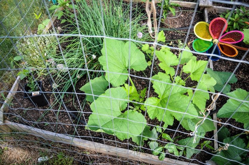 garden 5.23-30