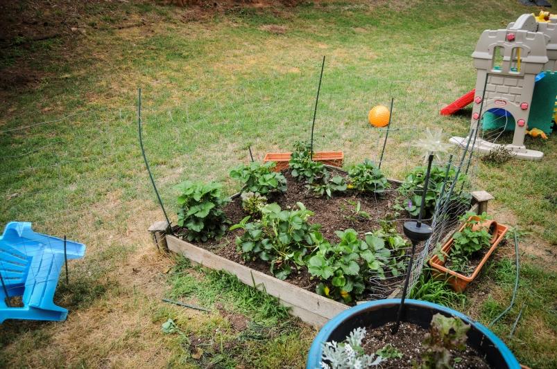 garden 5.23-48