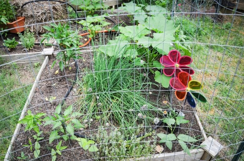 garden 5.23-60